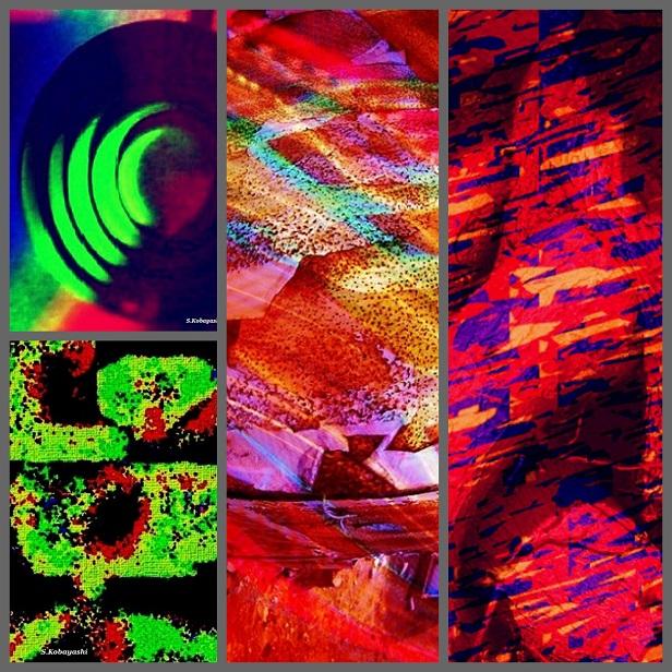 Collage_F (2).jpg